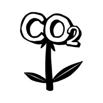 FFH-Thriving-CO2